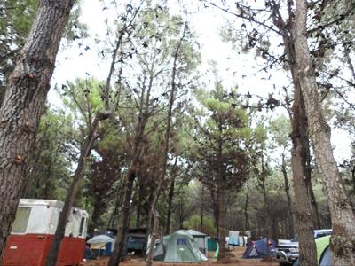 villa-gessell-camping-de-ingenieros-haciafuera01