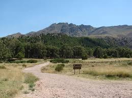 Camping Campamento Base. Cerro Ventana