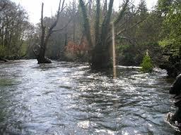 Coto de Pesca Altos Verdes. Castelli