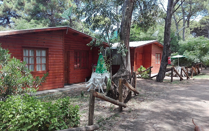Camping ATE Pehuen-co